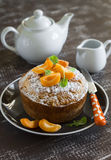 Simple pound cake, decorated with icing sugar and apricots on a brown plate Stock Images