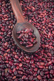 Simple red beans in polished wooden spoon Stock Photo