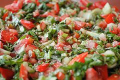 Simple red & green salad. Made with tomato, cucumber, onion, pepper and parsley Royalty Free Stock Photos