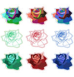 Simple Roses. A set of 9 roses in 3 different colours and 3 styles Royalty Free Stock Photography