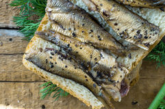 Simple sandwich with sardines Royalty Free Stock Image