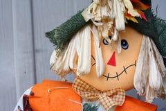 Simple Scarecrow Shot Stock Photos