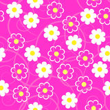 Simple schematic white flowers on a pink background. Floral seam Stock Images