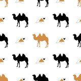 Simple seamless pattern with camels. Vector. Vector pattern. Gold and black camel.  Stock Image