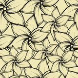 Simple seamless summer tropical background with exotic flowers, vector illustration. Stock Images