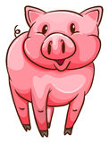 A simple sketch of a pig Royalty Free Stock Images