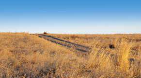 Simple Small Road Slanting Left. Simple small gravel road or path slanting left and ascending over a horizon with golden yellow grasses Stock Photography