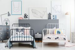 Simple style siblings bedroom interior with black and white beds. Rabbit, whale and elephant posters on white wall and gray drawer cabinet. Real photo stock images