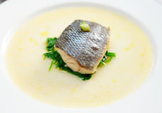 Simple but tasty piece of steamed seabass fillet Stock Photos