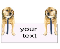 Simple text. And the white background Stock Images