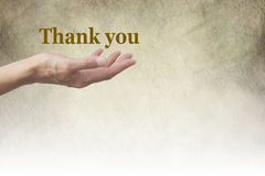 A Simple Thank You. Female hand outstretched with palm side up and a golden 'Thank You' floating above on a rustic parchment background fading to white Royalty Free Stock Photography