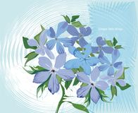 Simple things. Simple blue garden flowers on the abstract background Stock Photo