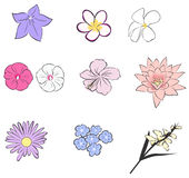Simple tropical flower icon collection set (vector Royalty Free Stock Photography