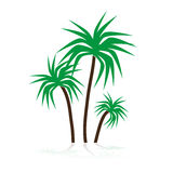 Simple tropical green palm trees symbols eps10 Royalty Free Stock Image