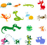 Simple vector animals cartoon - amphibians, reptiles and other Royalty Free Stock Images
