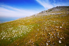 Simple view of  upland landscape Royalty Free Stock Photography