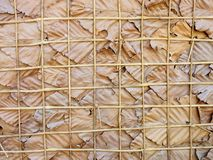 Simple wall of leaves and bamboo, Nakhon Ratchasima, Thailand. Close-up detail of a simple natural wall made out of large dried leaves with a wooden bamboo frame Royalty Free Stock Image