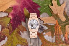 Simple watch lying in autumn leaves and rustic wood background Stock Image