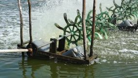 Simple Water Turbines Bringing Oxygen Into Pond stock video