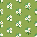 Simple white green floral seamless pattern. Background Royalty Free Illustration