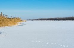 Simple winter landscape Royalty Free Stock Photos