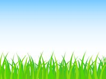 Simple and wonderful background from green grass and clear sky. Simple and wonderful background design created from green grass and clear sky Stock Images