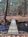 Simple Wood Plank Bridge in Forest. A simple wood plank bridge over creek in forest in the Pocono Mountains, Pennsylvania royalty free stock image