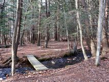 Simple Wood Plank Bridge in Forest. A simple wood plank bridge over creek in forest in the Pocono Mountains, Pennsylvania stock photo