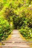 Simple Wooden Bridge Royalty Free Stock Photo