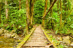 Simple Wooden Bridge Royalty Free Stock Photography