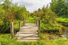 Simple wooden bridge of wooden planks and round beams. Over a ditch in a Dutch nature reserve in autumnal colors. The photo was taken at the Pompveld near stock images
