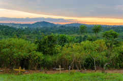 Simple wooden crosses and graves in front of lush jungle and dramatic sunset in Congo. Simple wooden crosses and graves in front of lush jungle and dramatic Stock Photography