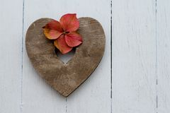 Simple wooden heart and hyrangea Stock Photography