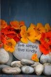 Simples e amável é a vida Fotos de Stock Royalty Free