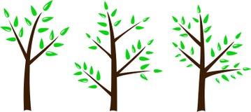 Simplicidad del árbol Imágenes de archivo libres de regalías