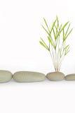 Simplicidad del zen Fotos de archivo