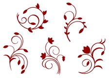 Simplicity floral decorations Royalty Free Stock Photos