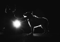 Simplistic Bonds. A black and white silhouette photograph of a woman and her dog Stock Photography