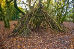 Simply constructed wooden den within the forest stock photos