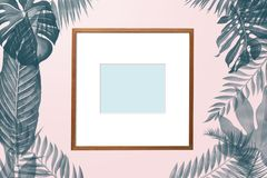 Simply creative nature frame made of tropical palm and fern. Leaves on pink pastel background, top view Royalty Free Stock Images