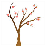 Simply Tree with pink flowers Stock Image