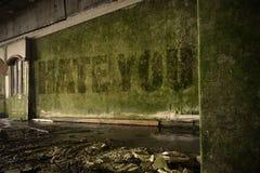 Simsen Sie Hass Sie auf der schmutzigen Wand in einem verlassenen ruinierten Haus Stockfoto