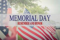 Simsen Sie Memorial Day und Ehre auf Reihe von Rasen amerikanischen Flaggen lizenzfreie stockfotografie