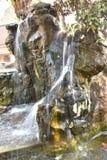 Simulera av vattenfallet i trädgård fotografering för bildbyråer