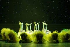 Simulering-guling fågelungar - barndans Royaltyfri Foto