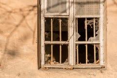 Sin los arrendatarios Imagenes de archivo