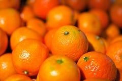 Sinaasappel Royalty-vrije Stock Fotografie