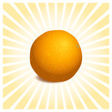 Sinaasappel 1 Stock Fotografie