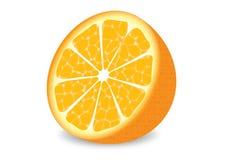 Sinaasappel. Royalty-vrije Stock Afbeeldingen