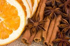 Sinaasappel, anijsplant en kaneel Royalty-vrije Stock Foto